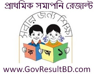 Primary School Certificate Result