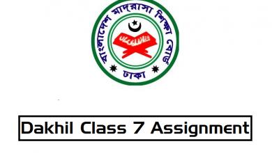 Dakhil Class 7 Assignment