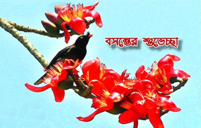 Pohela Falgun Wallpaper 2