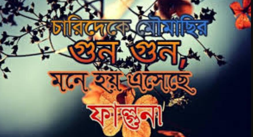 Pohela Falgun images 2