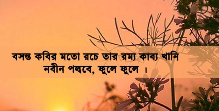 Pohela Falgun images 3