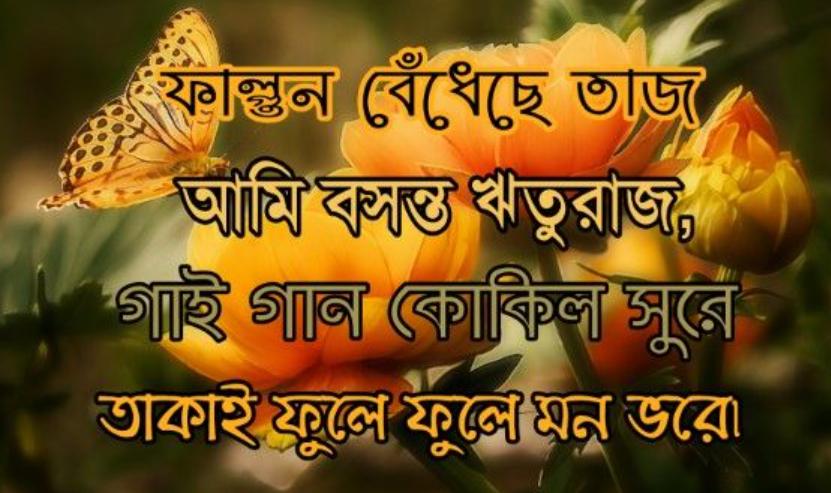 Pohela Falgun images