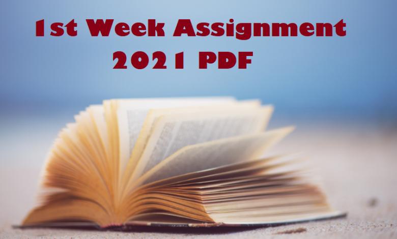 1st Week Assignment 2021 PDF