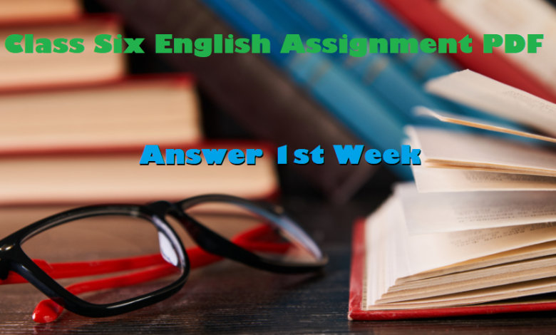 Class 6 English Assignment Answer