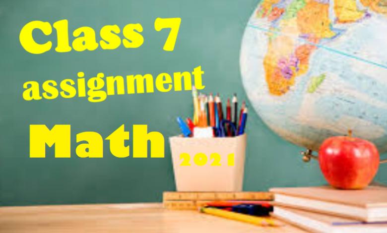Class 7 Math Assignment Answer