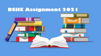 DSHE Assignment 2021