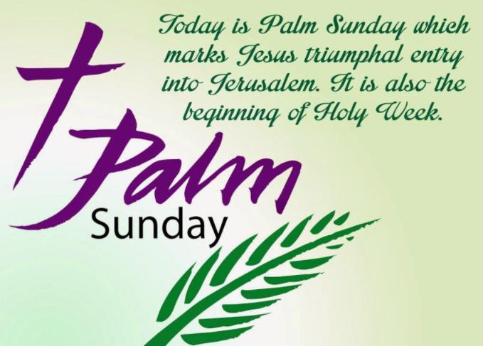 Happy Palm Sunday 4