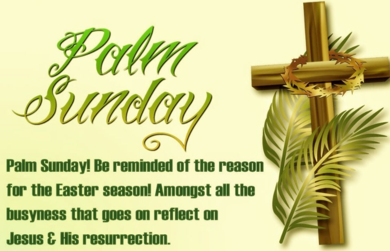 Happy Palm Sunday 5