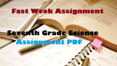 Seventh Grade Science Assignment PDF