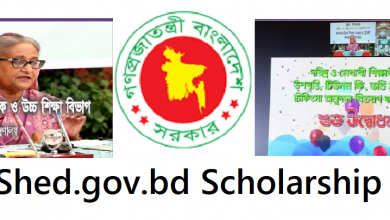 Shed.gov.bd Scholarship