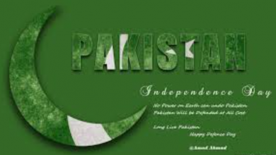 Pakistan Independence Day 3